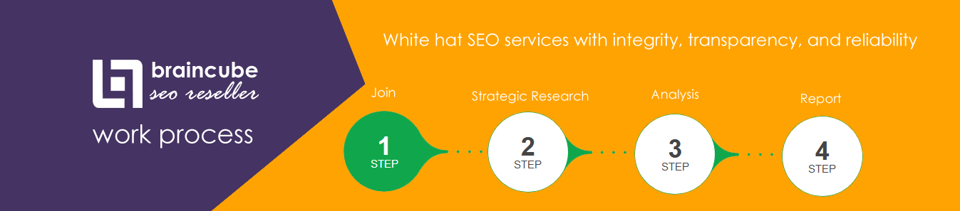 SEO Agency in India
